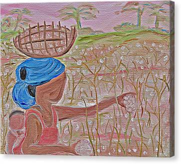 Cotton Balls Canvas Print by Carmen  Jackson