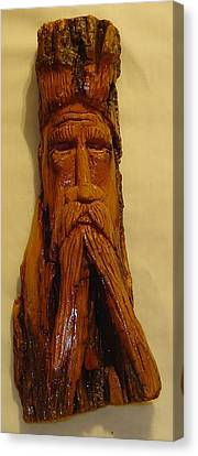 Cottonwood Bark  Wood Spirit Canvas Print by Russell Ellingsworth