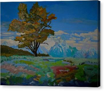 Cottonwood On Teton Range Canvas Print