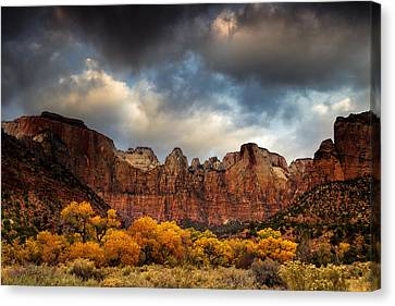 Cottonwoods Of Zion Canvas Print