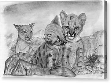Cougar As She Watches Her Cubs Canvas Print by Russ  Smith