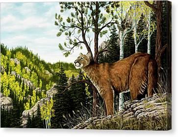 Cougar Country Canvas Print by Rick Bainbridge