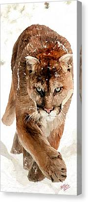 Cougar In The Snow Canvas Print by James Shepherd