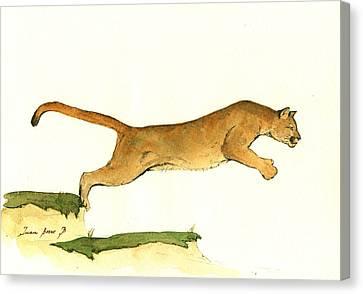 Cougar Canvas Print by Juan Bosco
