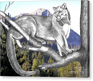 Cougar Mountain Canvas Print by Russ  Smith