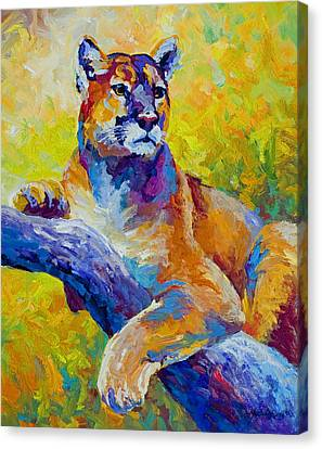 Cougar Portrait I Canvas Print by Marion Rose