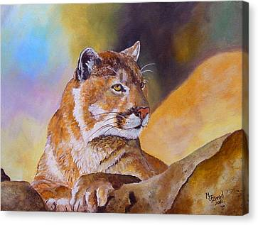 Cougar Wildlife Canvas Print by Mary Jo Zorad
