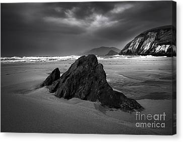 Coumeenoole Beach Canvas Print by Nichola Denny