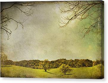 Oak Canvas Print - Count On Me by Laurie Search