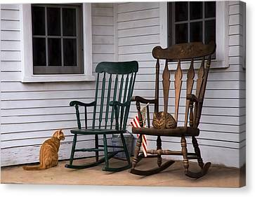 Country Cats Canvas Print