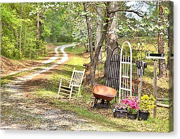 Canvas Print featuring the photograph Country Driveway In Springtime by Gordon Elwell