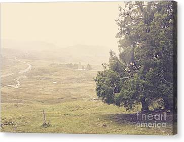 Country Farm Wilderness. Rural Australia Landscape Canvas Print by Jorgo Photography - Wall Art Gallery