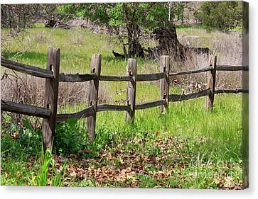 Country Fence Canvas Print by Carol Groenen