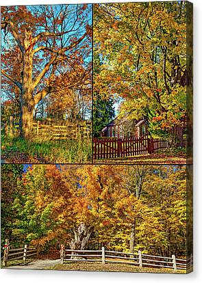 Country Fences Collage Canvas Print by Steve Harrington