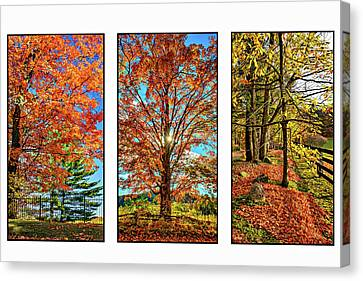 One Room School Houses Canvas Print - Country Fences Triptych by Steve Harrington