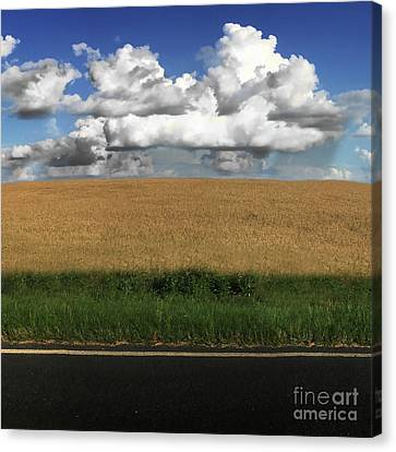 Country Field Canvas Print by Brian Jones