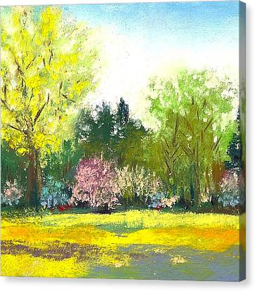 Country Garden Canvas Print by David Patterson