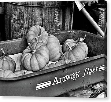 Country Gourds In Black And White Canvas Print by Smilin Eyes  Treasures