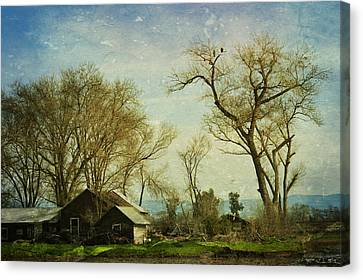 Country Home  Canvas Print by Pamela Patch