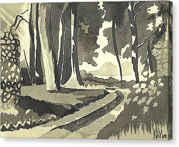 Country Lane In Evening Shadow Canvas Print by Kip DeVore