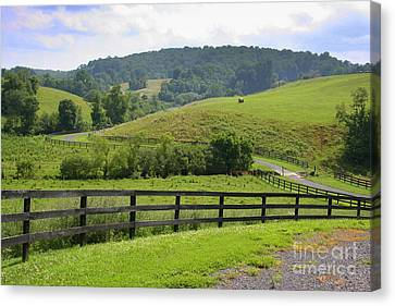 Country Lane Canvas Print by Julie Lueders