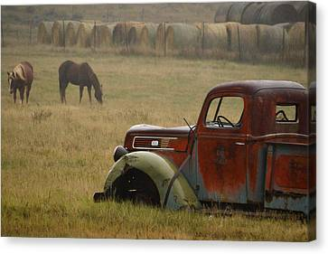 Canvas Print featuring the photograph Country Life.. by Al Swasey