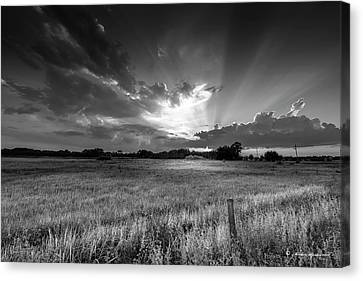 Country Life B/w Canvas Print by Marvin Spates