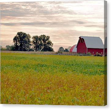 Country Living Canvas Print by Brittany H