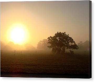 Country Morning Sunrise Canvas Print by Kimberly Camacho