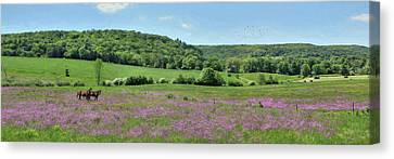 Country Panorama Canvas Print
