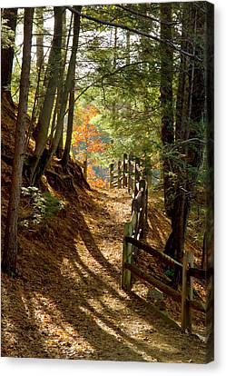 Canvas Print featuring the photograph Country Path by Arthur Dodd