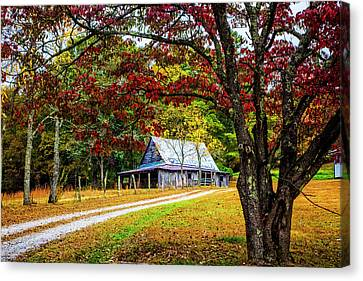 Dogwood Lake Canvas Print - Country Paths by Debra and Dave Vanderlaan
