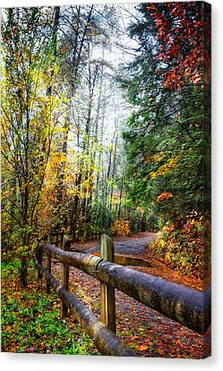 Smokey Mountain Drive Canvas Print - Country Rain by Debra and Dave Vanderlaan