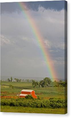 Country Rainbow Canvas Print by James BO  Insogna