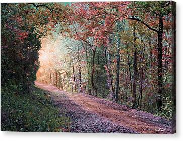 Country Road Canvas Print by Bill Stephens