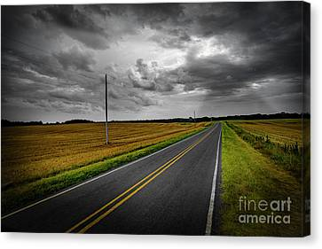 Country Road Canvas Print by Brian Jones