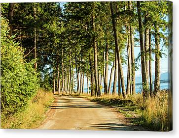 Country Road Canvas Print by Claude Dalley