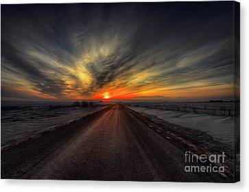 Country Road Dawn Canvas Print by Ian McGregor