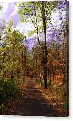 Country Road In Autumn Canvas Print by Bill Cannon