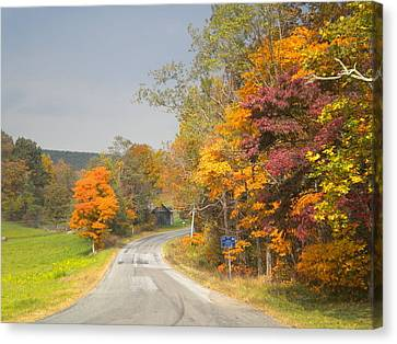 Canvas Print featuring the photograph Country Road In The Fall by Diannah Lynch