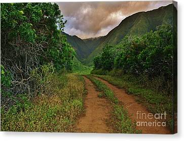 Country Road Kalaupapa, Molokai Canvas Print