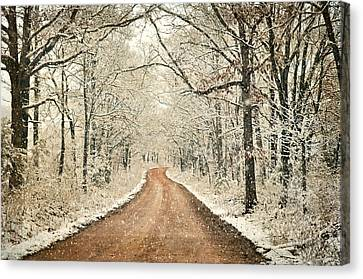 Country Roadq Canvas Print