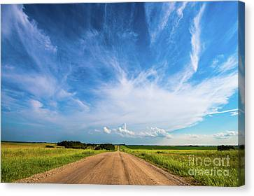 Country Roads IIi Canvas Print by Ian McGregor