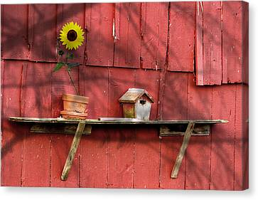 Shelf Canvas Print - Country Still Life II by Tom Mc Nemar