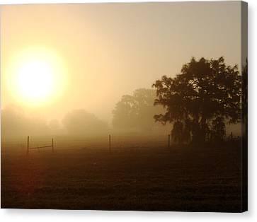 Country Sunrise Canvas Print by Kimberly Camacho
