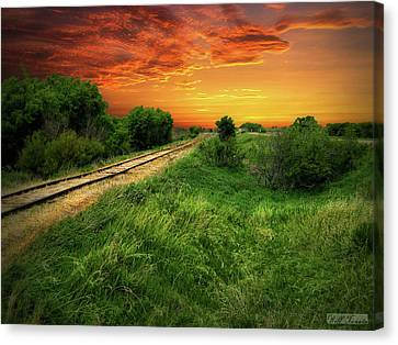 Country Tracks 2 Canvas Print