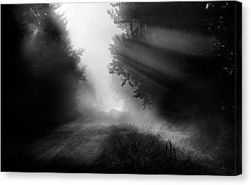 Country Trails Canvas Print