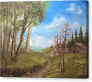 Country Valley  Canvas Print