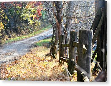 Country Wv Road Canvas Print by Chastity Hoff
