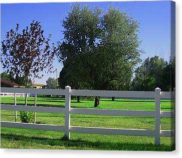 Canvas Print featuring the photograph Country Yard by Tammy Sutherland